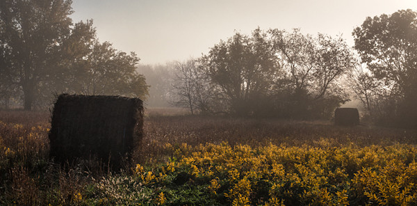 Hay Bales in Autumn Fog - color