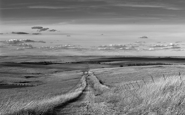 Prairie Road, the Kansas Flint Hills - bw
