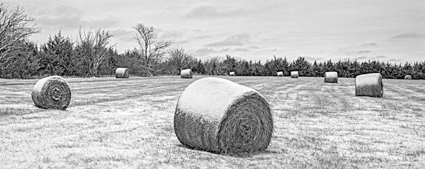 Snow Field Panorama, Eastern Kansas - bw