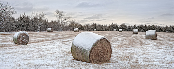 Snow Field Panorama, Eastern Kansas - color