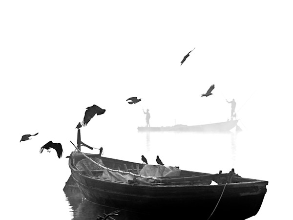 Black Crows Misty Morning - Varanasi India