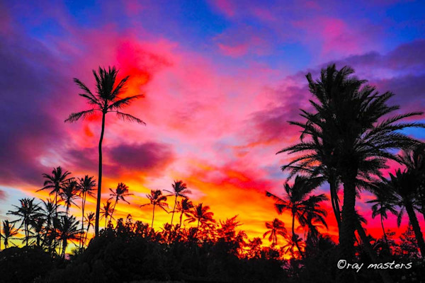 Maui Hawaii photographs and paintings – available as Fine Art on Canvas, Paper, Metal & More