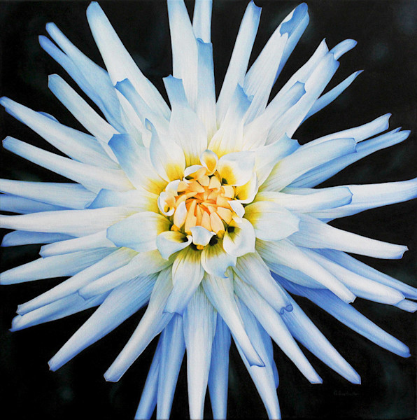 Alexandra Averbach's oil painting of a beautiful dahlia features amazing detail.