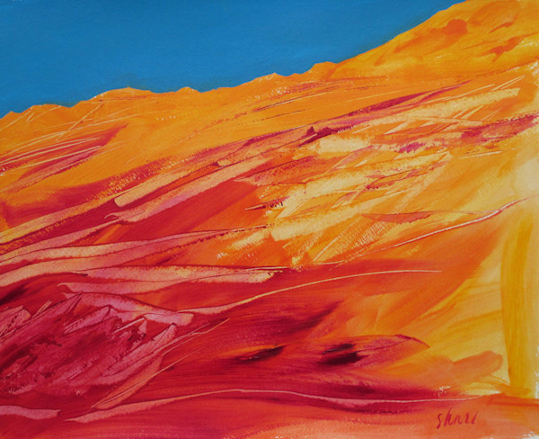 Stephen Hall paints one-of-a-kind original acrylic artwork based on his travels in the Sonoran desert in the American Southwest.