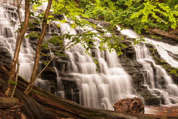 Waterfall Wall Art: Mohawk Falls