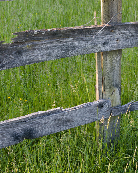 Countryside Wall Art: Old Wood Fence