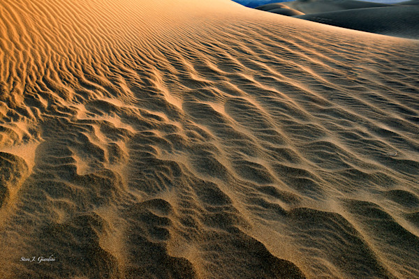 Sand Ripples (141254LLND8-P) Photograph for Sale as Fine Art