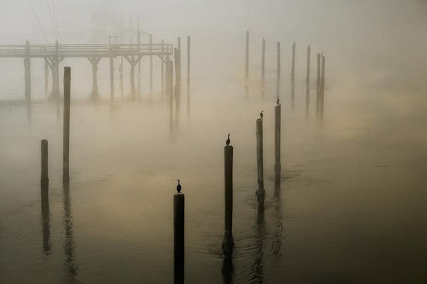 Morning fog at the coastal fishing village of Charleston, Oregon