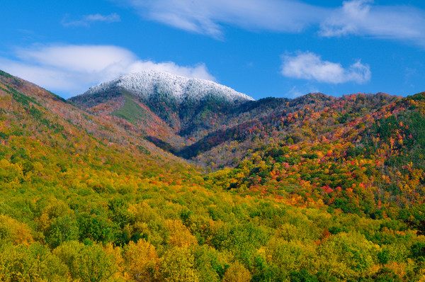 Autumn view of Mount Le Conte