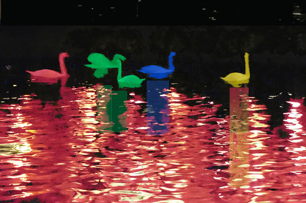 colored-swans2