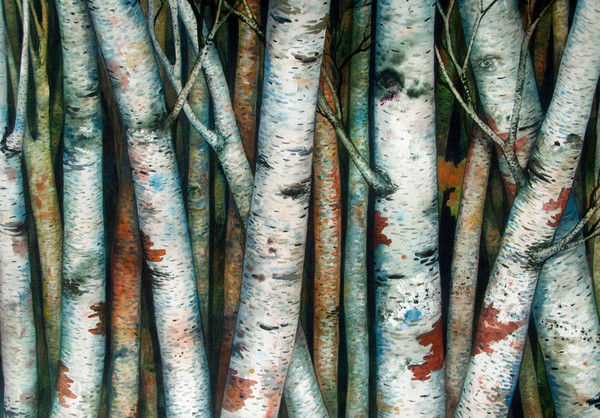 This original watercolor painting by Helen Klebesadel shows a birch forest, with eyes watching humanity.