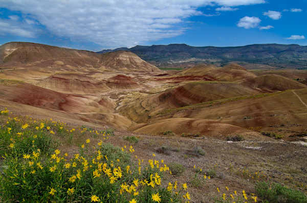 Painted Hills Photograph for Sale as Fine Art.