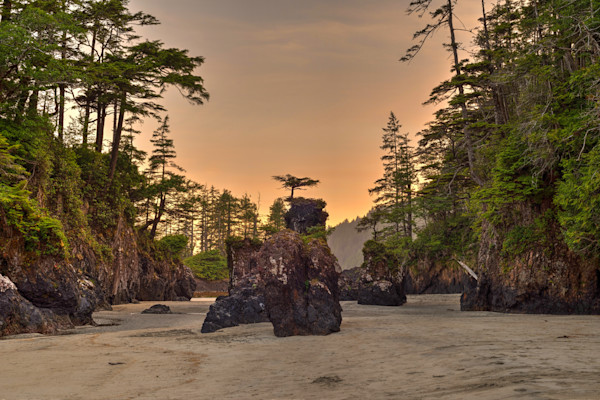 San Joseph Bay Sea Stacks Photograph for Sale as Fine Art.