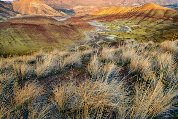Painted Hills II (131161LND8-P) Photograph for Sale as Fine Art Print