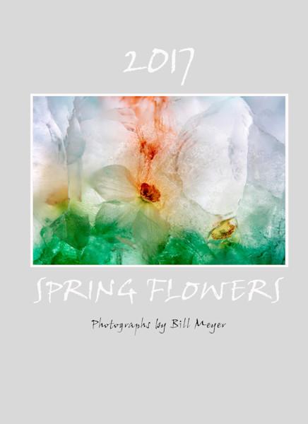 Ice Flower Day Planner