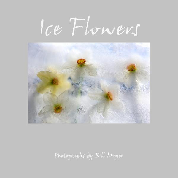 Ice Flowers Book
