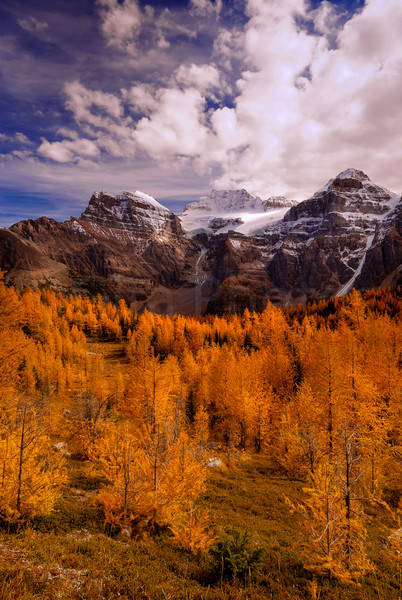 Larch Valley and the Wenkchemna Peaks. Banff National Park | canadian Rockies | Rocky Mountains|