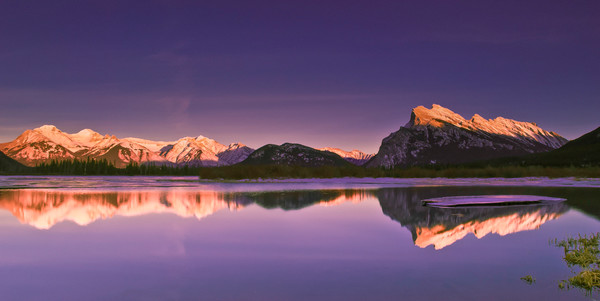 Purple Haze. Banff National Park|Canadian Rockies|Rocky Mountains|