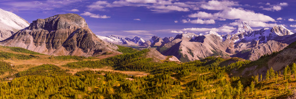 The King -  His Court.Canadian Rockies|Rocky Mountains|Banff National Park|