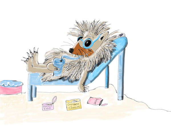 Hedgehog on Vacation Staycation Fine Art Print