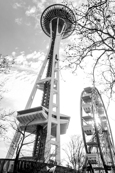 Black and white Space needle Wall Art Photographs.