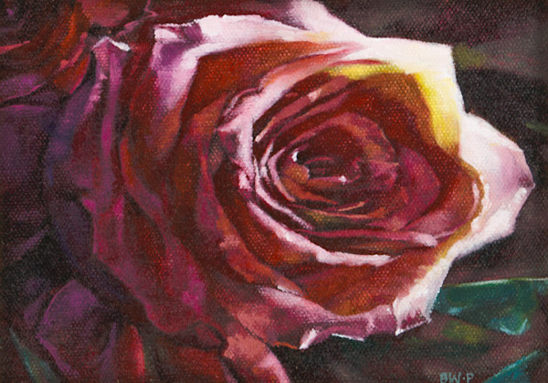 Rose by Barbara Waterman-Peters