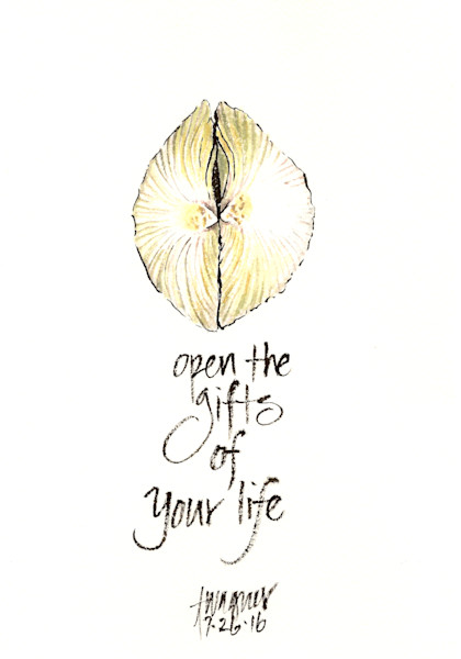 Open the Gifts of Life
