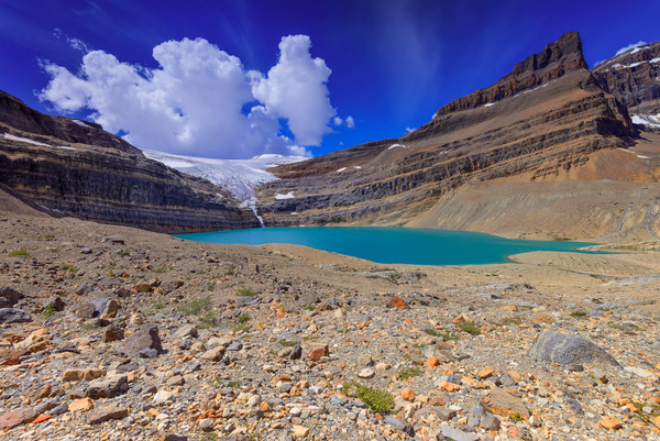 Iceberg Lake and Bow Glacier