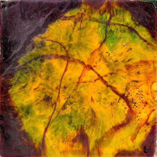Sun Flares  - Art Print