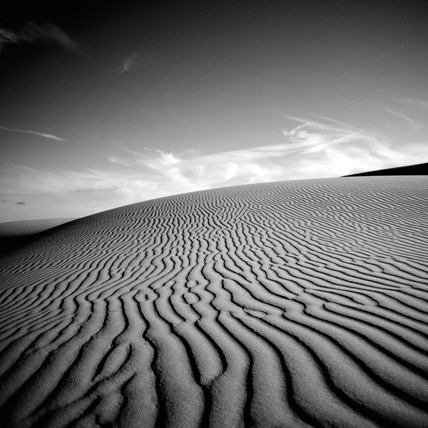 Oceano Dunes California Photographs Black and White Art Decor.