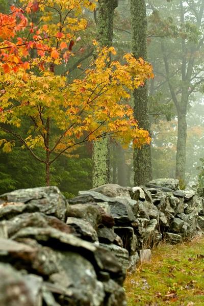 New England Art. Vermont Fall Photographs.