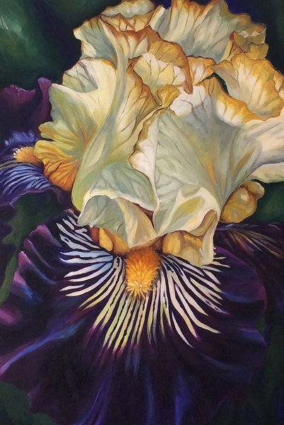 A gorgeous single purple and white iris bloom fills the canvas in this acrylic painting by Sara Bardin.