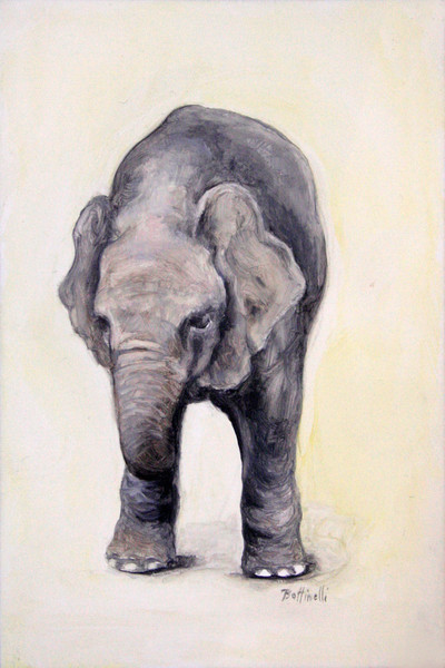 Elephant Calf - custom size print