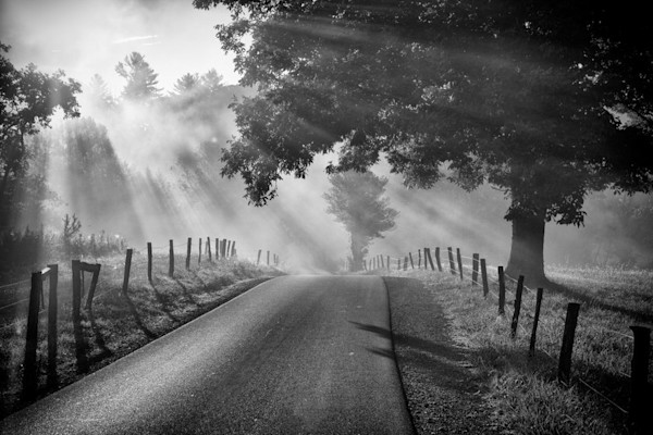 A haunting black and white image of a desolate road is the subject of this Open Edition print by photographer Todd McPhetridge.