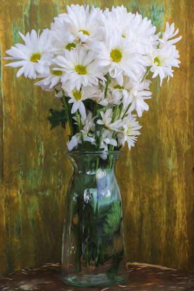 An arrangement of beautiful bright white daisies sit in a clear vase in this print by photographer Todd McPhetridge.