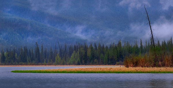 Misty Vermilion View. Banff National Park|Canadian Rockies|Rocky Mountains|