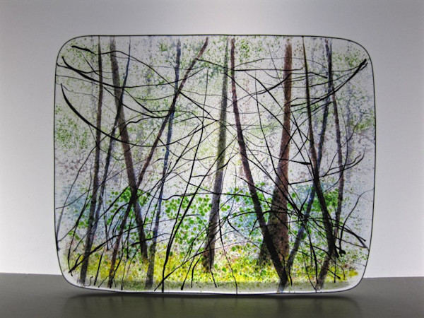 Tabor Thicket #1