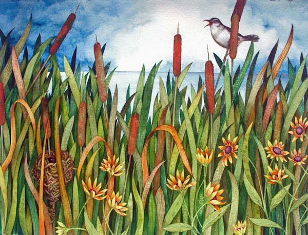 Stunning original watercolor of a Marsh Wren in the cattails
