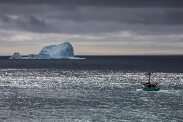 Iceberg - For A Look
