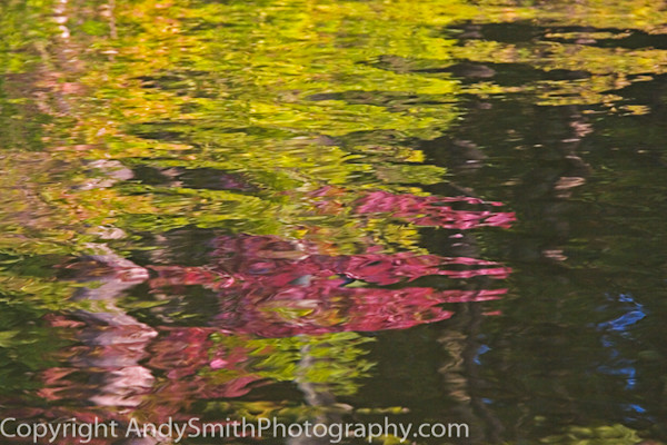 Fall Reflection fine art photograph