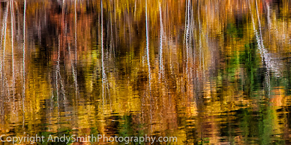 Fall Reflection on the Lackawaxen  fine art photograph