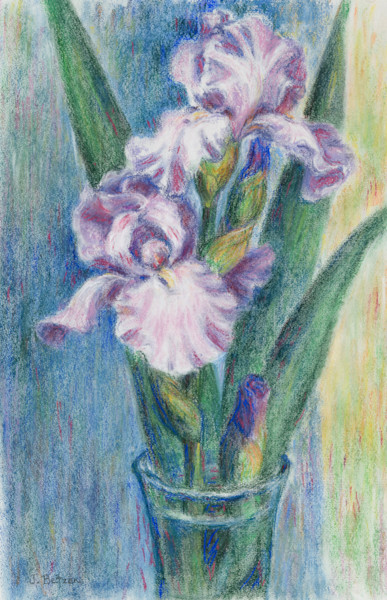 Pink Irises by Julie Betzen Tilton