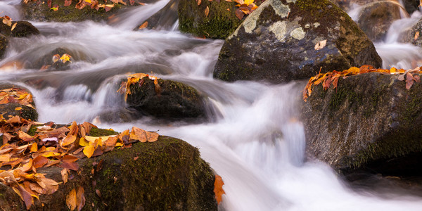 Waterfall wall art: Rose River Rapids