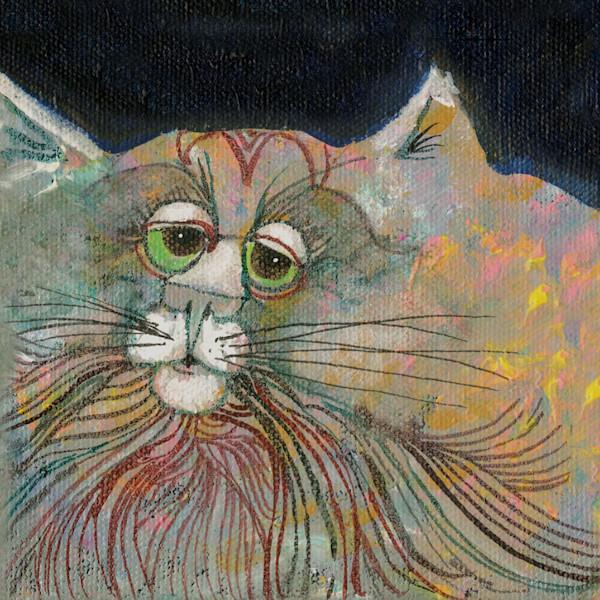 Another Cat Selfie