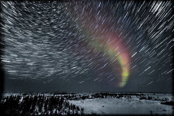 Aurora and Star Trails in a Snowy Landscape - Churchill, Manitoba, Canada 2013