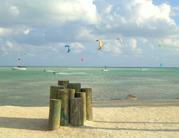 Hang Gliders Along the Florida Coastllne