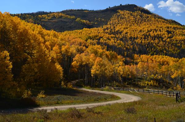 Pathway into Autumn Paradise