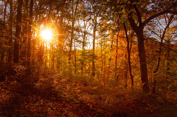 Autumn Sunset Landscape Photo Wall Art by Landscape Photographer Melissa Fague