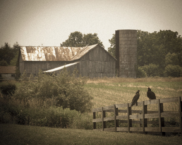 Buzzard Barn Landscape Photo Wall Art by Landscape Photographer Melissa Fague