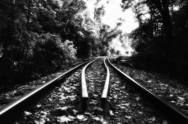 Leading Me Into The Light Black and White Landscape Photo Wall Art by Landscape Photographer Melissa Fague